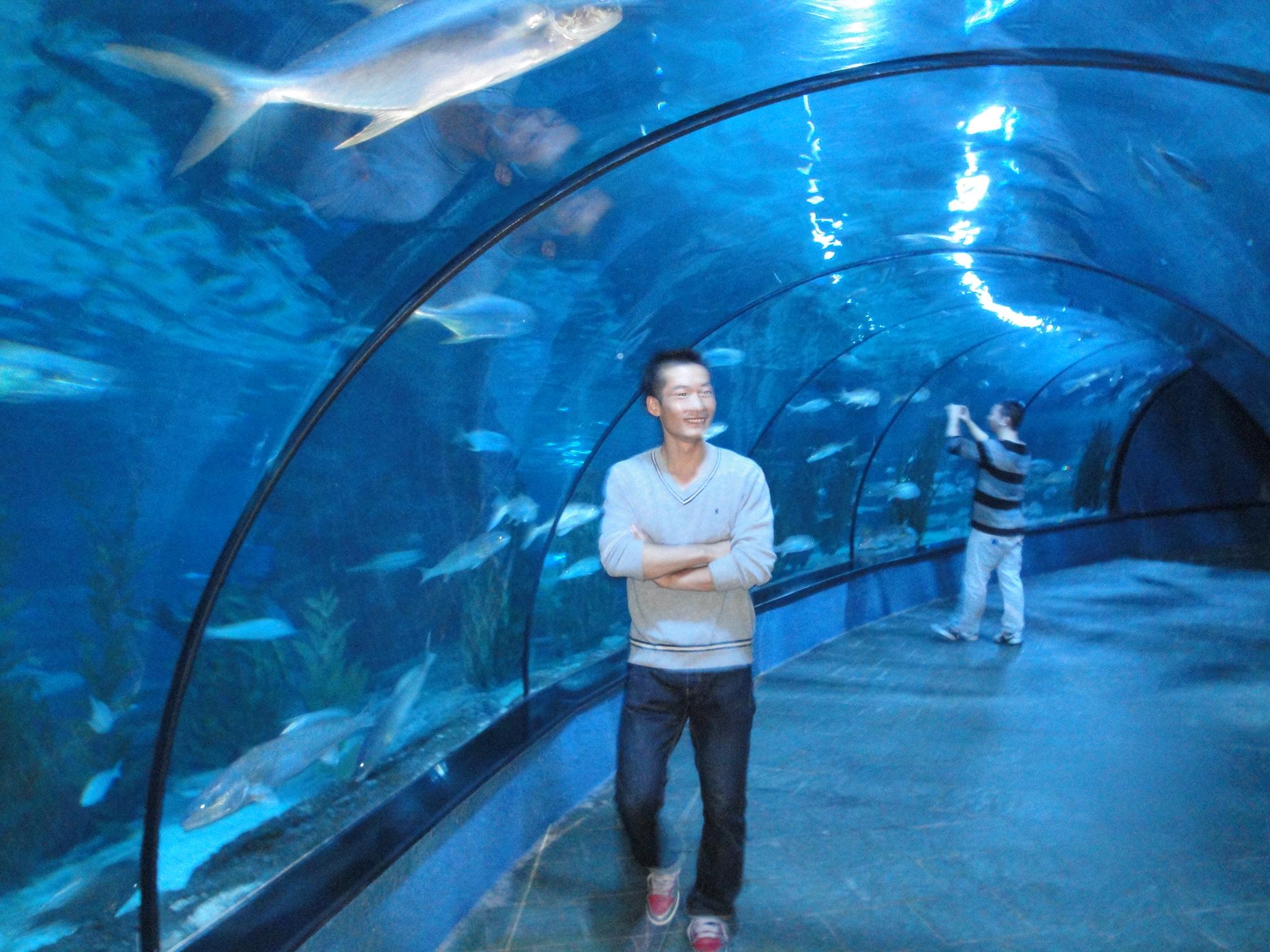 壁纸 海底 海底世界 海洋馆 水族馆 2048_1536