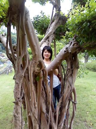 重庆市阿依林海旅游区
